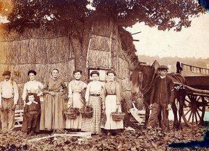 Famille Cabasset, 1910 - Cueilleurs de fraises et leur panier